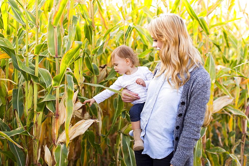 Mother and daughter (12-17 months) in corn field, Salt Lake City, Utah