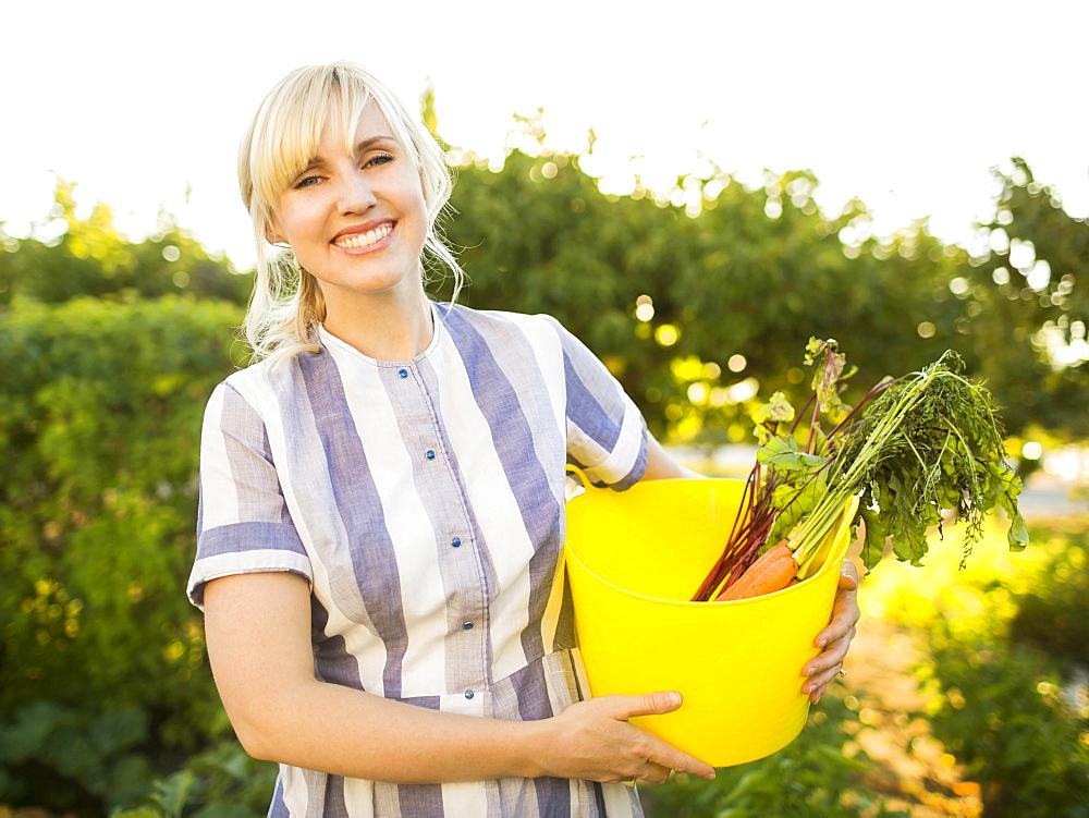 Woman picking vegetables in garden, Salt Lake City, Utah
