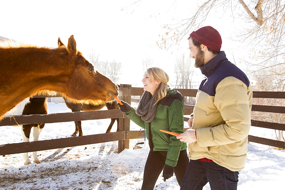 Young couple feeding horse with carrots, Salt Lake City, Utah