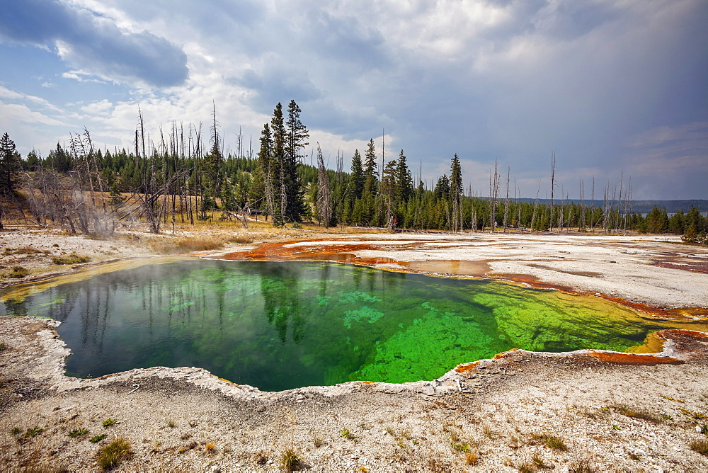 West Thumb Geyser Basin, West Thumb Geyser Basin, Yellowstone National Park, Wyoming