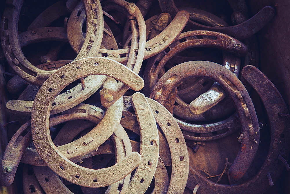 Rusted horseshoes in crate