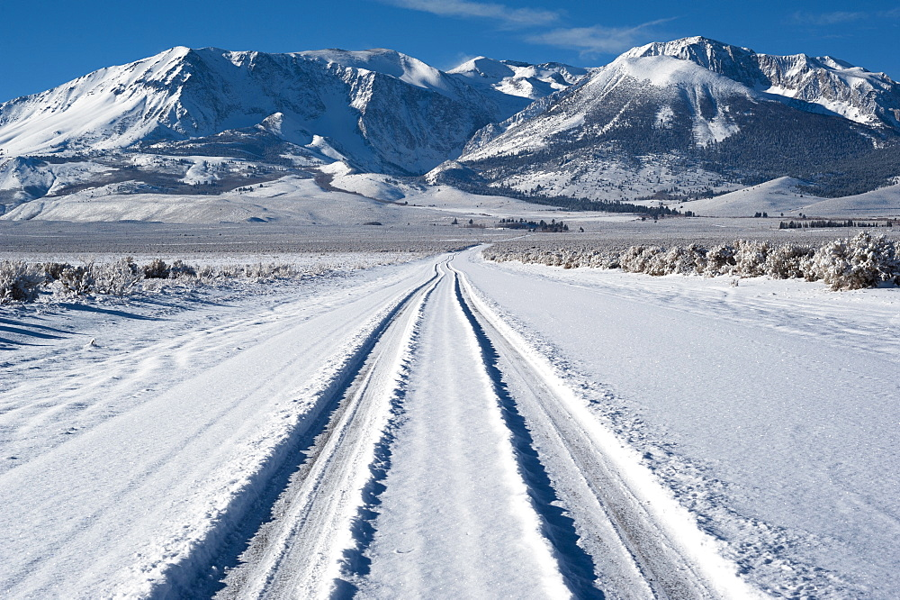 Tyre track on snow, Eastern Sierra California
