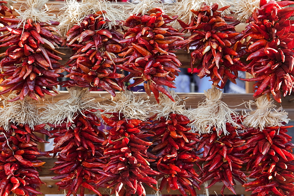 Rows of hanging chili peppers