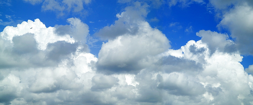 Puffy white clouds against a blue sky