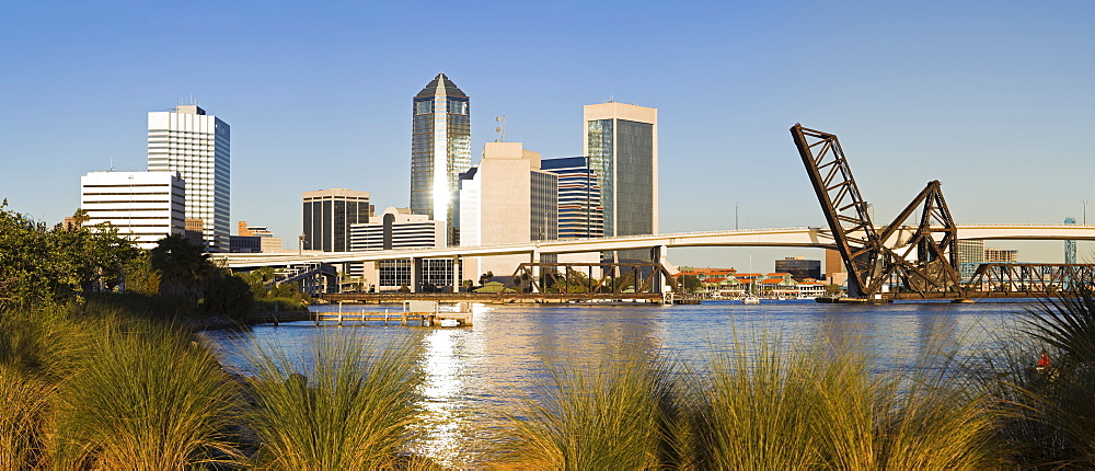 USA, Florida, Jacksonville, City skyline