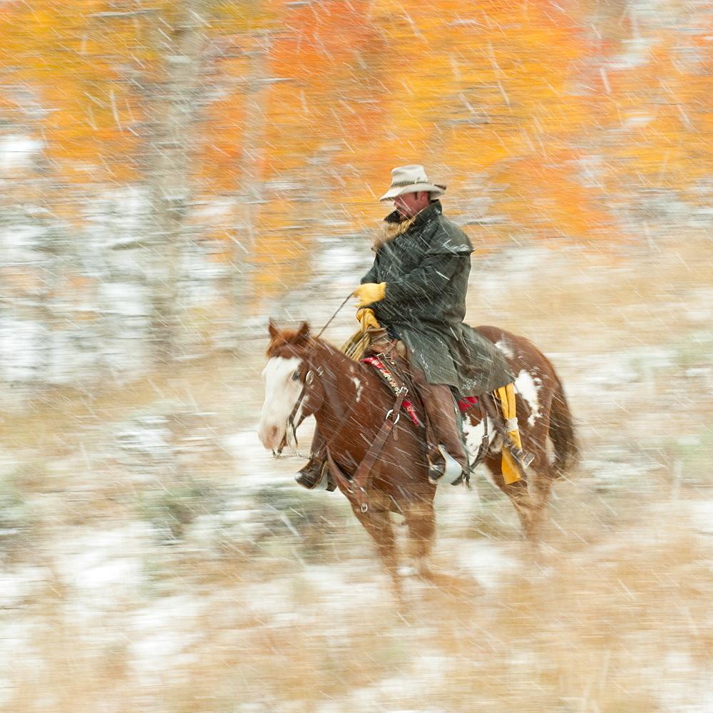 Horseback rider in rain