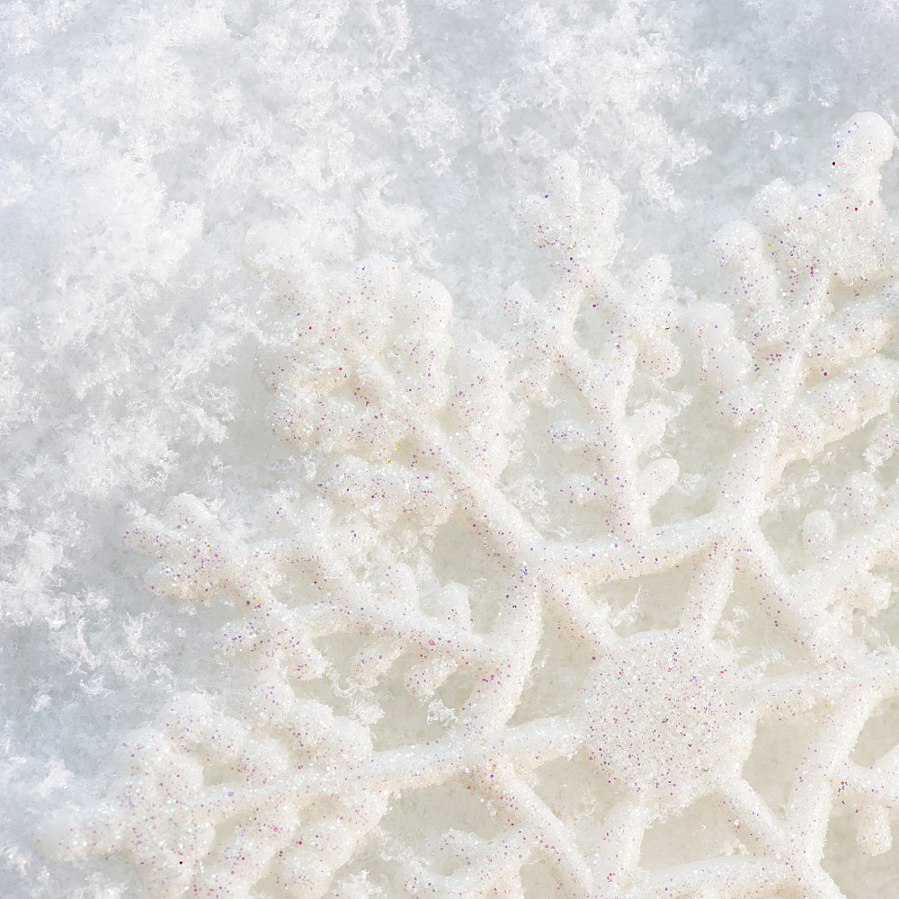 Close-up view of snowflake