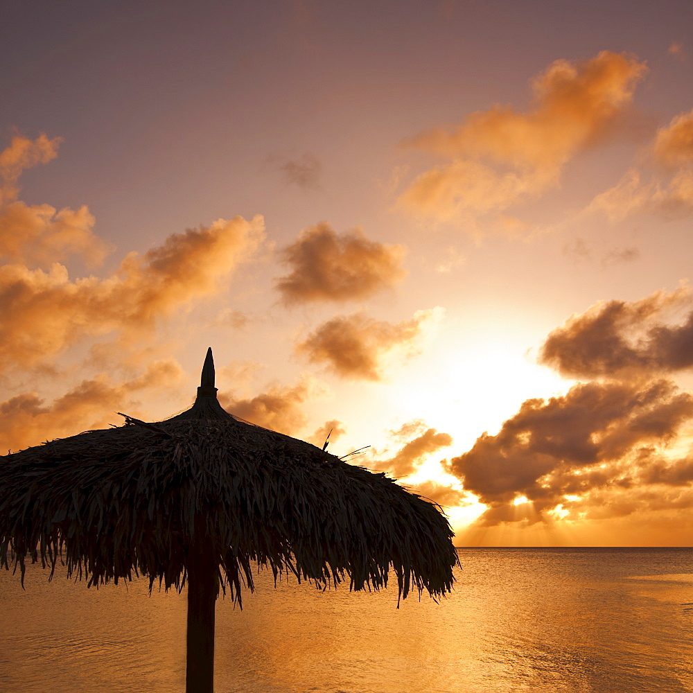 Aruba, silhouette of palapa on beach at sunset