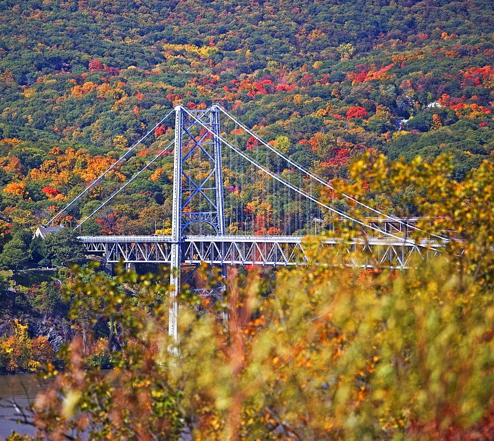 USA, New York, Bear Mountain, bridge in forest