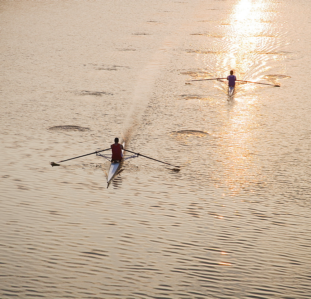 High angle view of people sculling