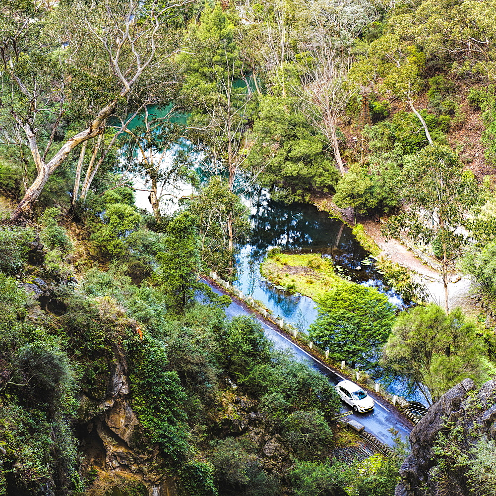 Australia, New South Wales, Jenolan Caves, Blue Lake, Car on road at shore of lake among forest covered slopes