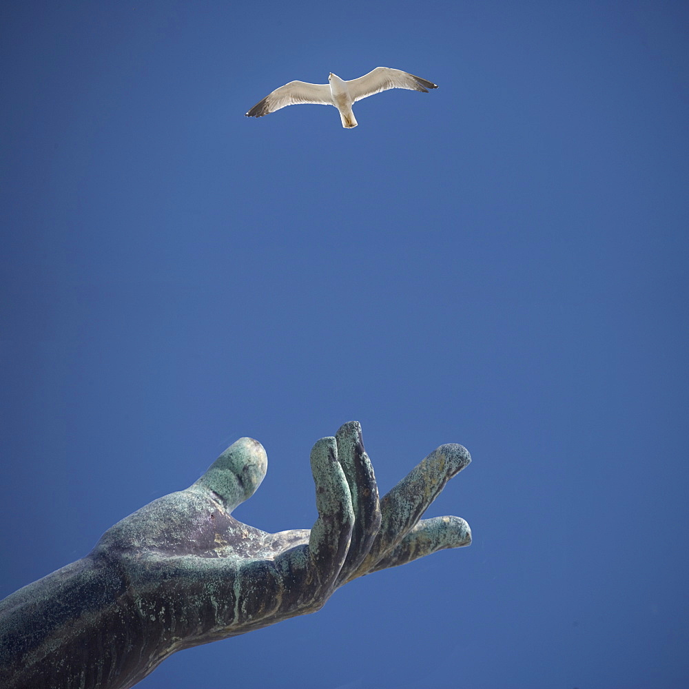 Hand of statue with flying bird