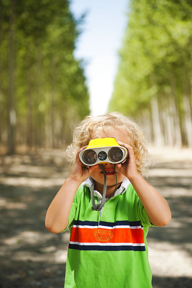 Boy (2-3) looking through binoculars in tree farm