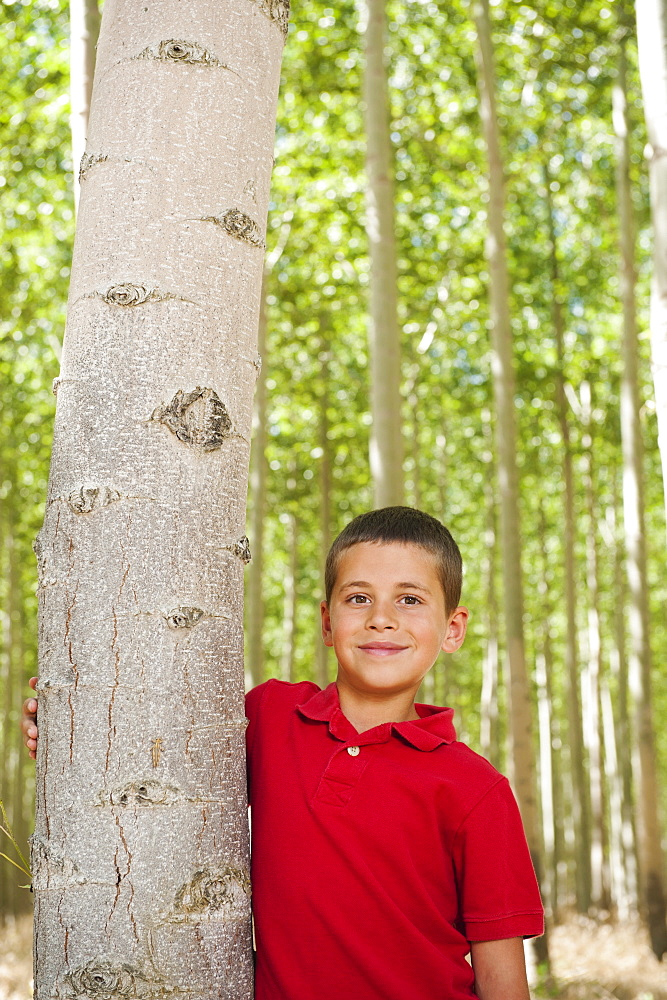 USA, Oregon, Boardman, Boy (8-9) standing between poplar trees in tree farm