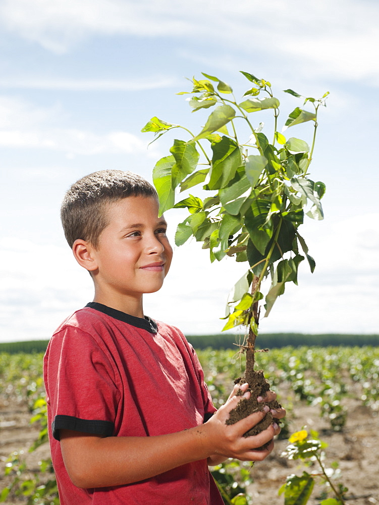 Boy (8-9) planting trees in tree farm
