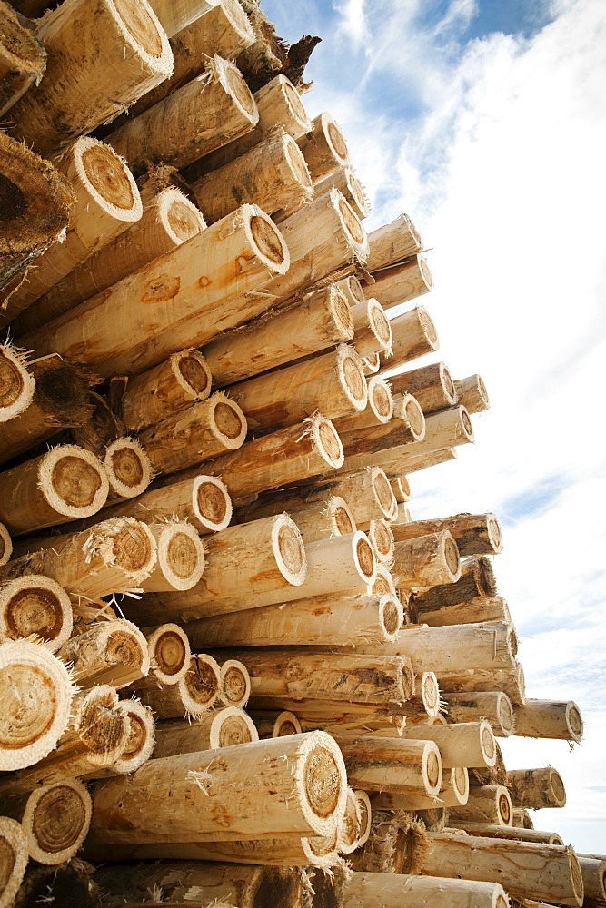 Stack of timber against sky