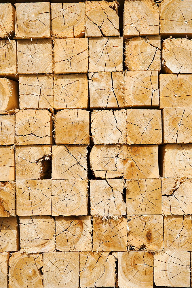 Full-frame shot of orderly timber stacks