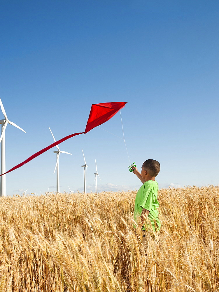USA, Oregon, Wasco, Boy (8-9) playing with kite in wheat field, wind turbines in background