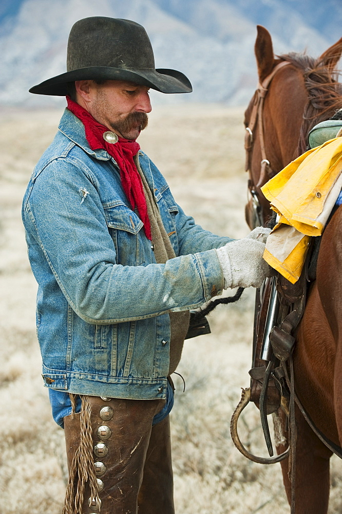 Man adjusting saddle on horse