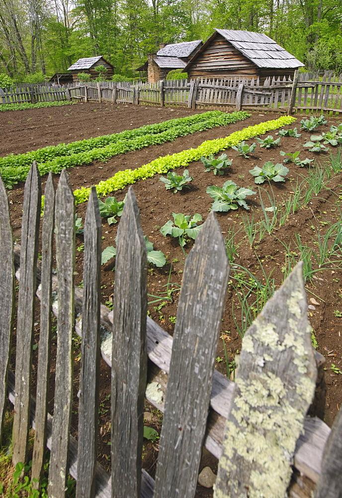 A vegetable garden at Smoky Mountain National Park