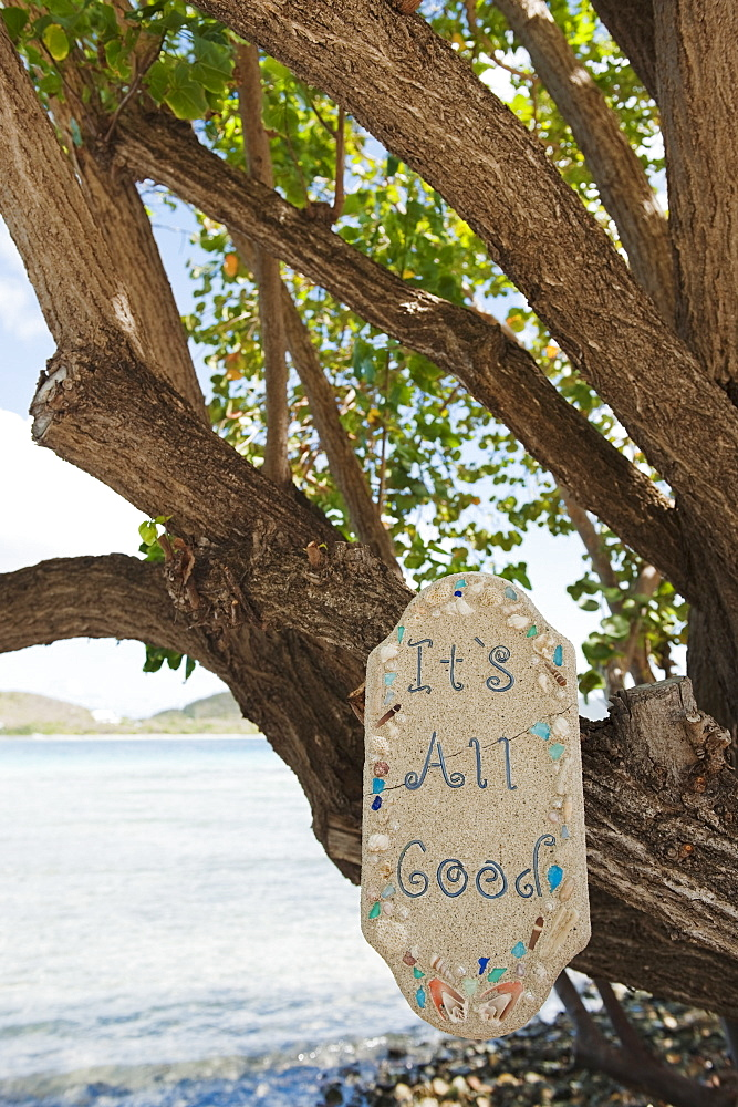 Optimistic sign on tropical tree