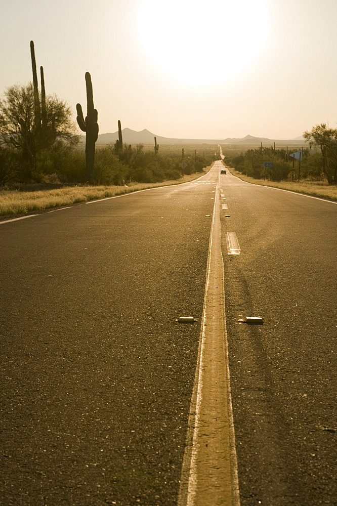 Sun shining over desert road, Flagstaff, Arizona