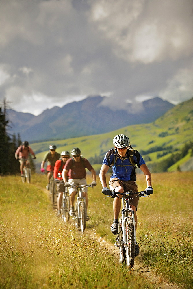 Men mountain biking on trail