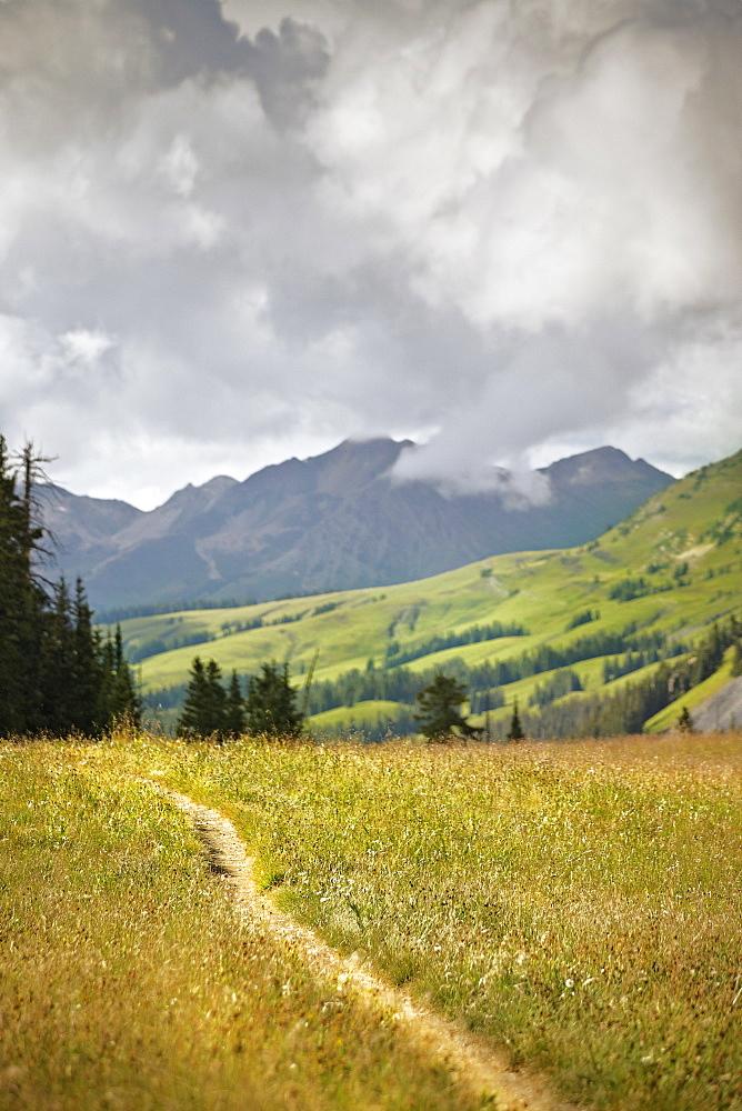 Track through mountains