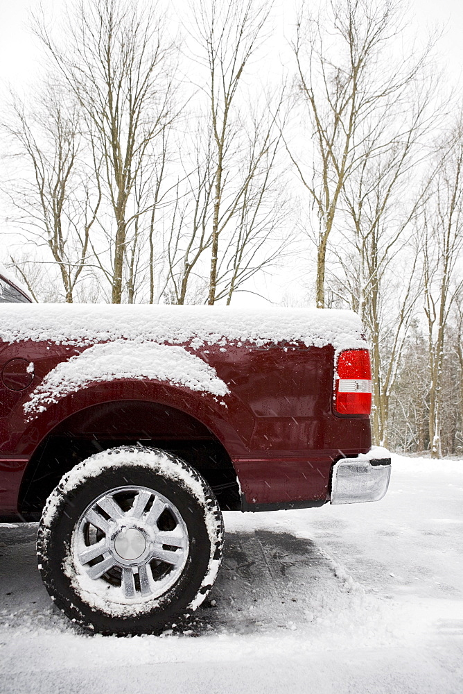 Rear of pickup truck covered in snow