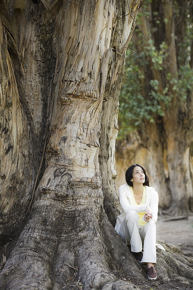 A woman outdoors sitting by a large tree