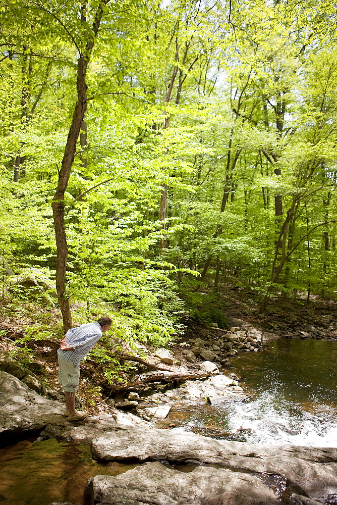 A man at a stream in the woods