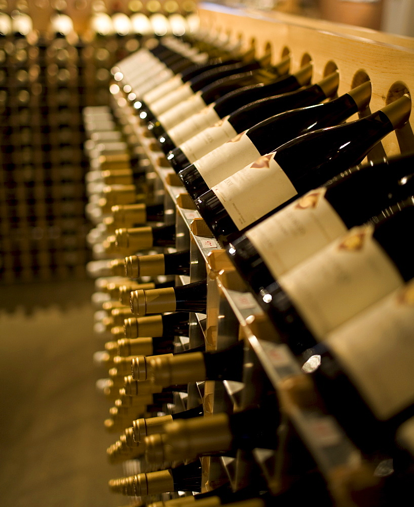 Racks of wine bottles