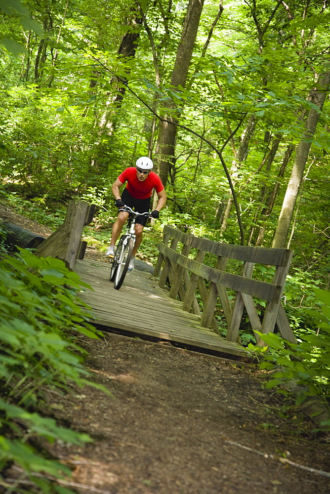 Man riding mountain bike in woods