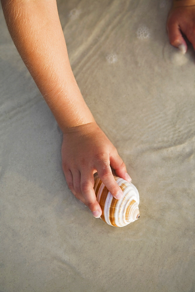 Girl picking up sea shell, Florida, United States