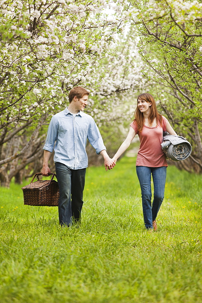 USA, Utah, Provo, Young couple with picnic basket in orchard