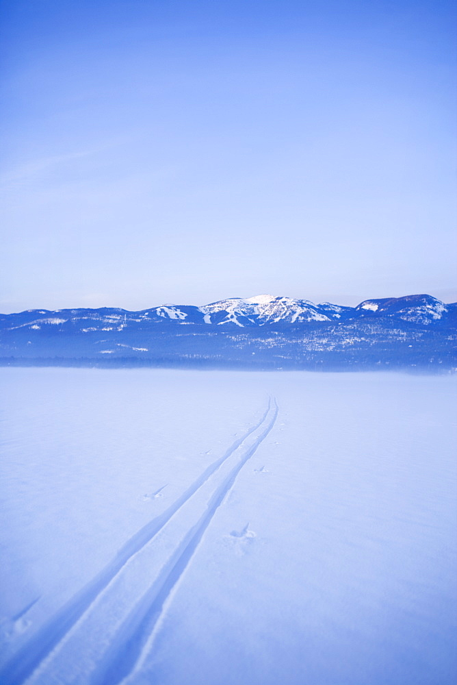 USA, Montana, Whitefish, Cross country skiing tracks in snow