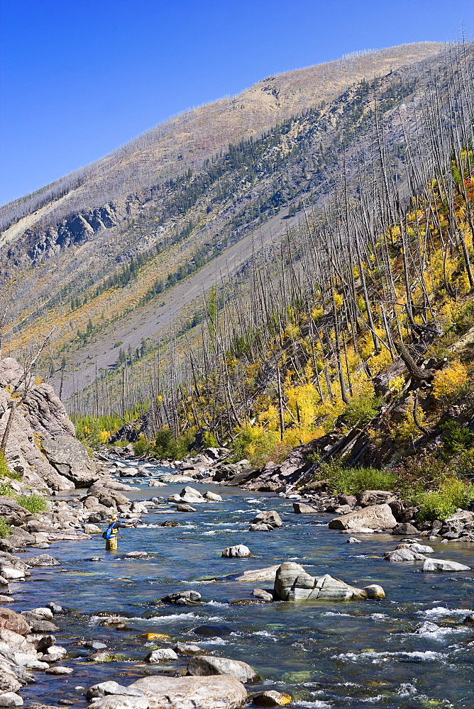USA, Montana, Woman fly fishing in North Fork of Blackfoot River