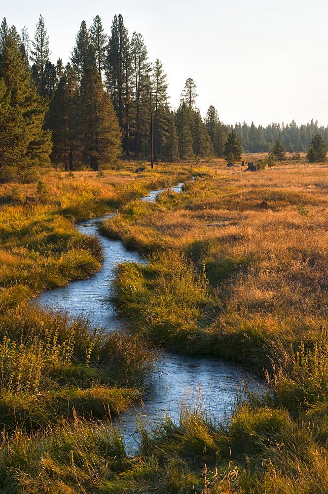 USA, Oregon, Paulina Creek