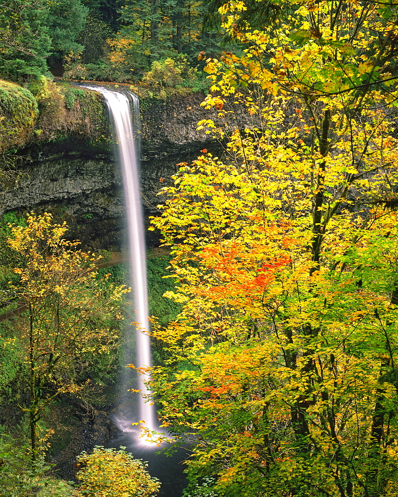 USA, Oregon, Silver Falls