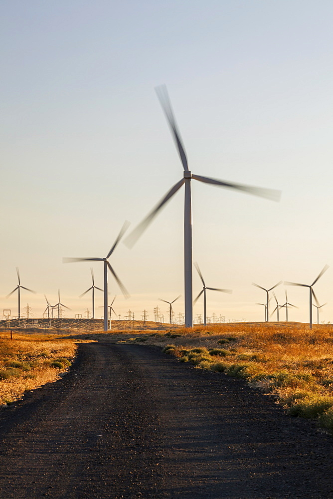 Wind turbines in late afternoon, Oregon