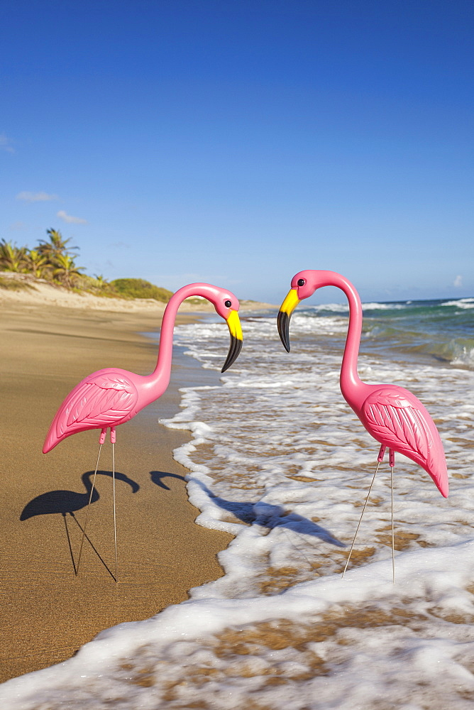 Two plastic flamingos, Isabel Beach, Puerto Rico
