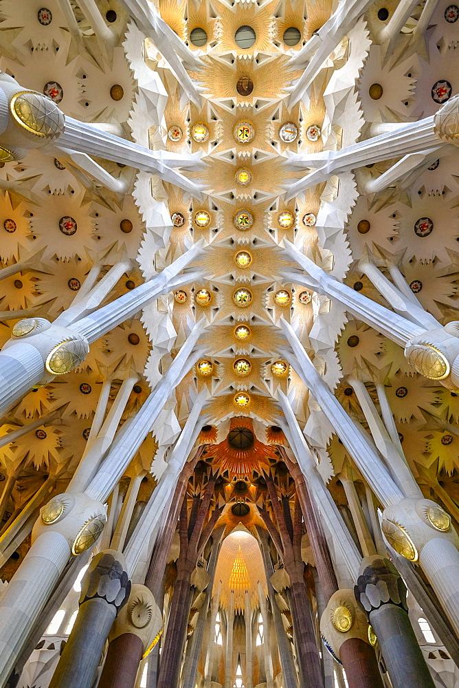 Sagrada Familia church interior, Barcelona, Spain