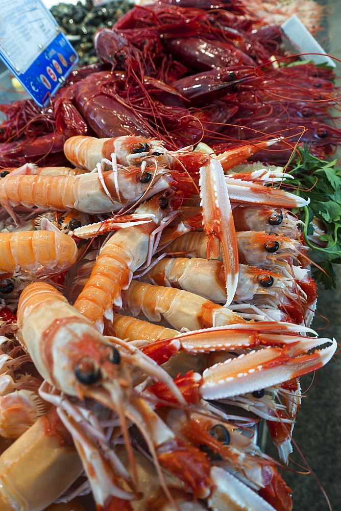 Close up of langoustines, Cadiz, Spain