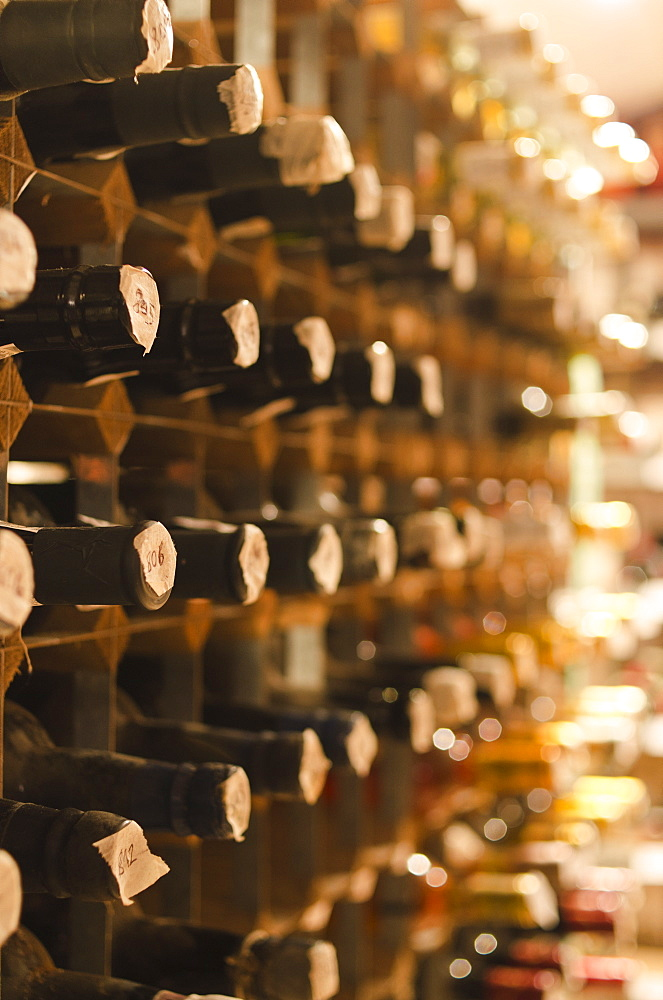 Old wine bottles on cellar shelves