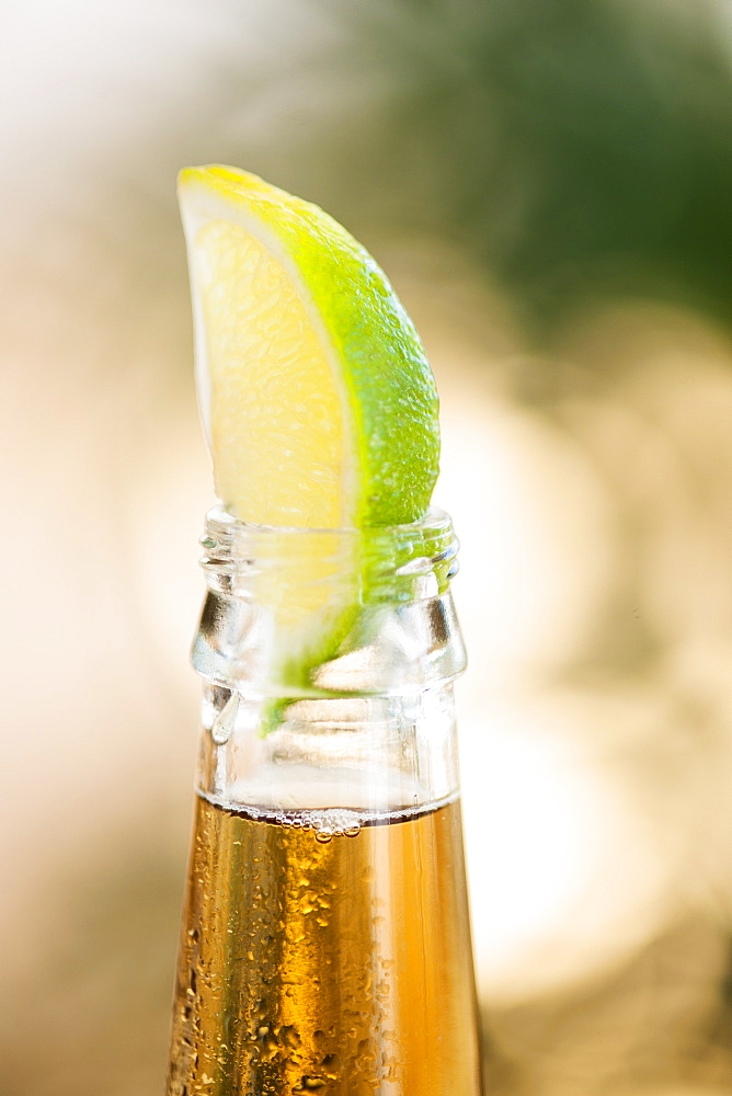 Beer bottle with lime wedge