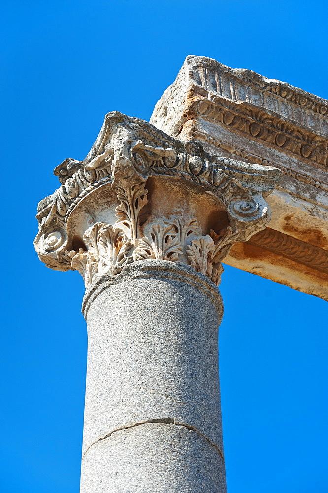 Turkey, Ephesus, Corinthian column