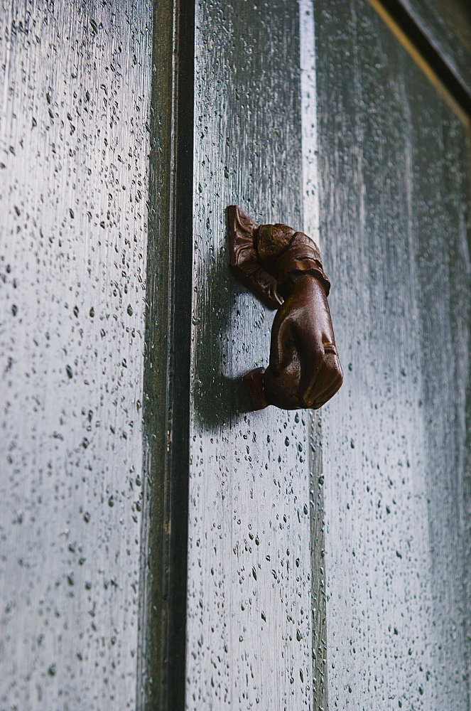 USA, South Carolina, Charleston, Close up of door knocker on door in rain