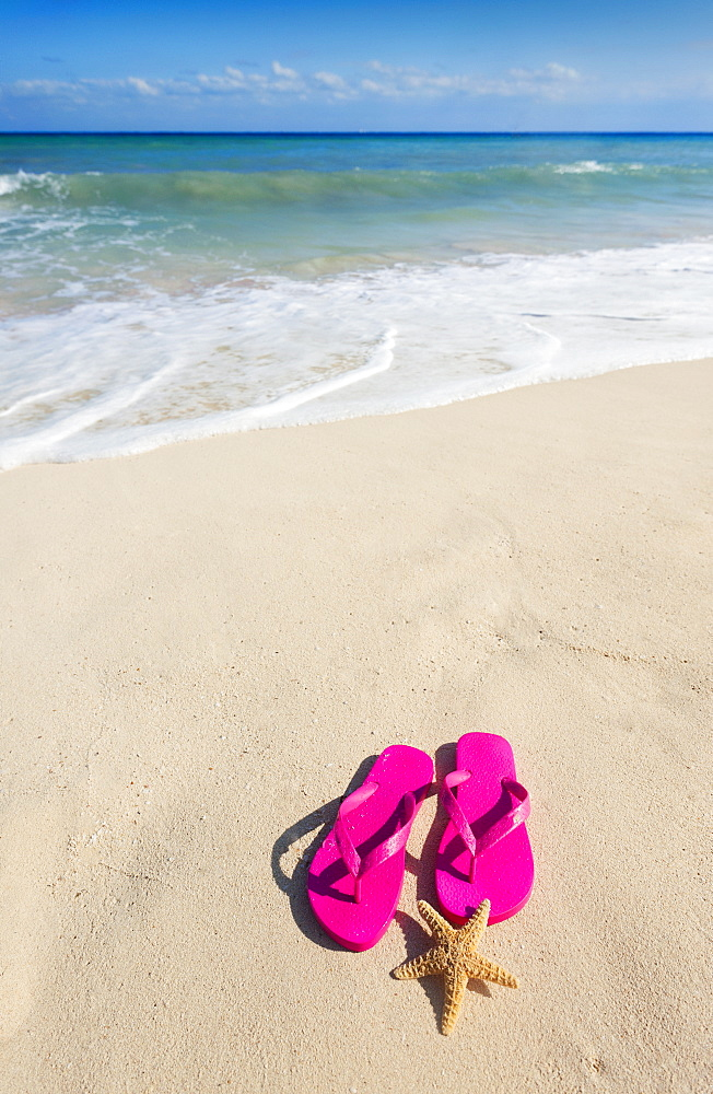 Sandals with starfish on beach