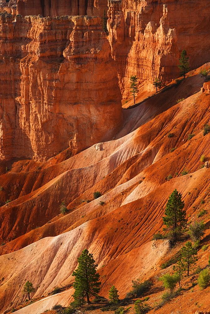 Bryce Amphitheater, USA, Utah, Bryce Canyon