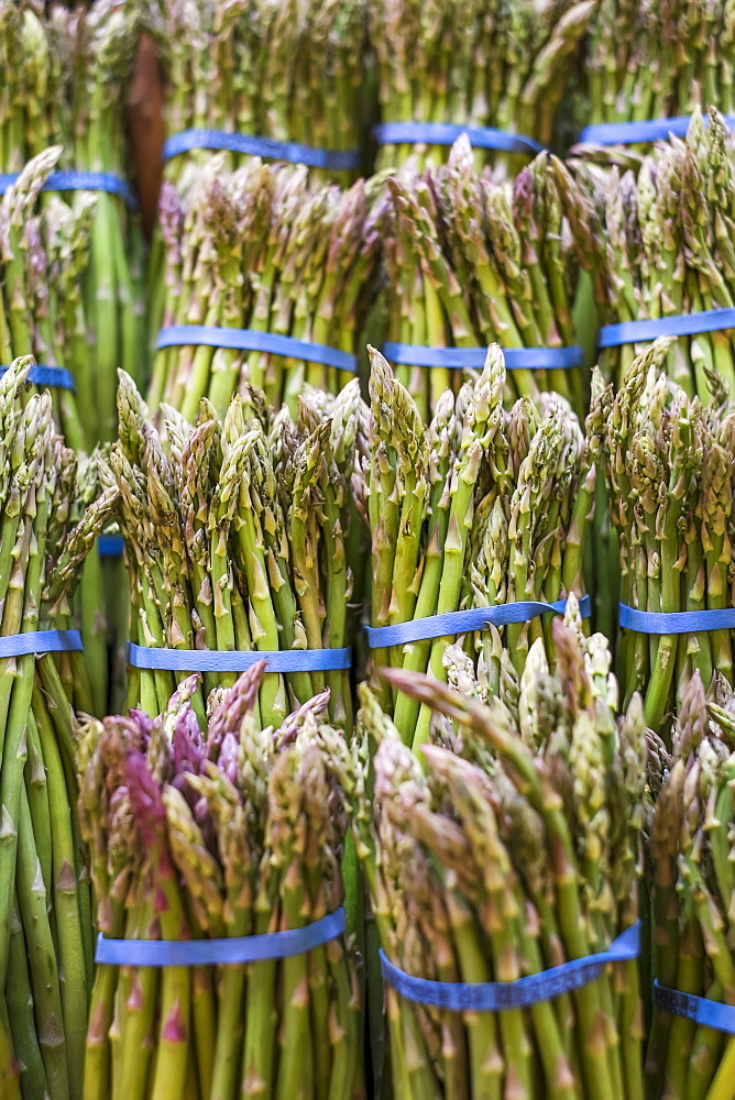 Close-up of asparagus bunches on market stall